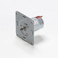 DMN29 6DG Series DC Brush Motors with Continuous Operation (DMN29B6HPB)